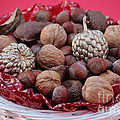 Mixed Holiday Nuts by Luv Photography