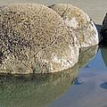 Moeraki Boulders by Joyce Woodhouse