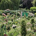 Monets Garden - Giverney - France by Christiane Schulze Art And Photography