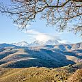 Monte Cinto From Col De San Colombano In Corsica by Jon Ingall