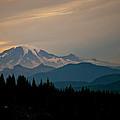 Mt Rainier by Albert Seger