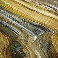 Ocean Cliff Textures by Charmian Vistaunet