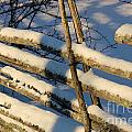 Old Swedish Wooden Fence In Winter by Kerstin Ivarsson