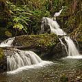 Onomea Falls by Jim Thompson