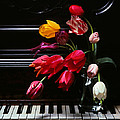 Piano by Photophilous