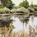 Placid Waters by Chisho Maas