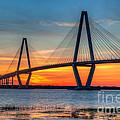Ravenel Bridge Twilight Twinkle by Dale Powell