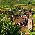 Riquewihr Alsace by Brian Jannsen