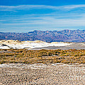 Salt Creek Death Valley National Park by Fred Stearns