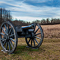 Saratoga Battlefield by Jiayin Ma