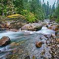 Sauk River by Bob Stevens