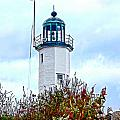 Scituate Light by Carol Sutherland