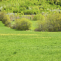 Spring Farm Landscape In Maine by Keith Webber Jr