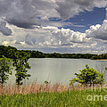 3-summer Time At Moraine View State Park by Alan Look