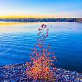 Sunset At Lake Wylie by Alex Grichenko