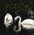 Swans II by Jan Reid