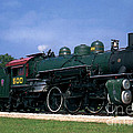 Texas State Railroad by Ruth  Housley