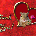Thank You Squirrel by Jeanette K