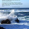 The Serenity Prayer by Barbara Snyder