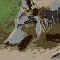The Wolf by Ernie Echols