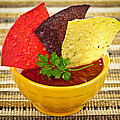 Tortilla Chips And Salsa by Elena Elisseeva
