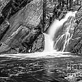 True's Brook Gorge Water Fall by Edward Fielding