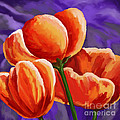 3 Tulips Red Purple by Tim Gilliland