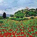 Tuscan Poppies by Allan P Friedlander