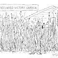 Declared Victory Garden by Mike Twohy