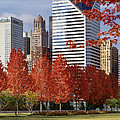 Usa, Illinois, Chicago, Millennium by Panoramic Images