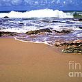 Vieques Beach by Thomas R Fletcher