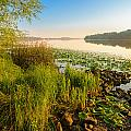 View Of The Dniper River At Morning by Alain De Maximy