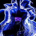 Violin  by Gerald Kloss