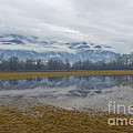 Water Puddle by Mats Silvan