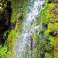 Waterfall - Ausable Chasm - Ny by Cristina Stefan