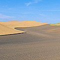 Wheat Fields, S.e. Washington by Panoramic Images