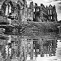 Whitby Abbey by Traci Law