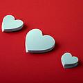 White Hearts by Scott Sanders