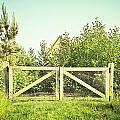 Wooden Gate by Tom Gowanlock