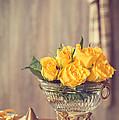 Yellow Roses by Amanda Elwell
