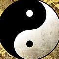 Yin And Yang 4 by Roz Abellera