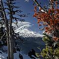 Mt Hood From Lookout Mtn by Albert Seger