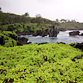 Hawaii by Sergi Reboredo