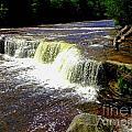 Tahquamenon Falls by Elizabeth Stone