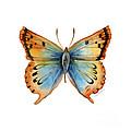 33 Opal Copper Butterfly by Amy Kirkpatrick