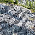 Usa, Alaska, Glacier Bay National Park by Jaynes Gallery
