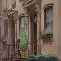 36th Street Ny Residence Of Fdr by Walter Lynn Mosley