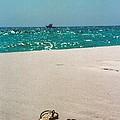 #384 33a Sandals On The Beach - Destin Florida by Robin Lee Mccarthy Photography