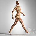 3d Rendering Of A Naked Woman Walking by Leonello Calvetti