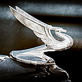 1935 Chevrolet Hood Ornament by Jill Reger
